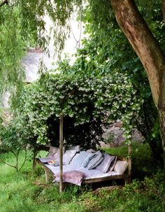 So lovely. Best seat in the garden!