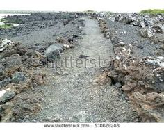 Image result for path through rocks