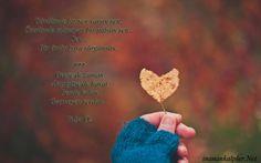 #şiirsokakta #şiirinibuldum #şiir #şiirheryerde #şiirinibıraktım #sözlerim #dizelerim #bendekalan #sen Geçse de zaman Akıp gitse de hayat Bende kalan Geçmeyen sevdan...