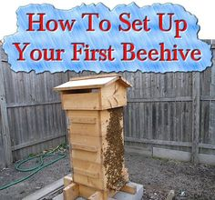 Welcome to living Green & Frugally. We aim to provide all your natural and frugal needs with lots of great tips and advice, How To Set Up Your First Beehive Bee Hive Plans, Raising Bees, Bee Boxes, Backyard Beekeeping, Bee Friendly, Living Off The Land, Busy Bee, Save The Bees, Bee Happy
