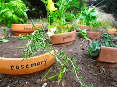 The curves of cast-aside pot rims plant perfectly into soil to label herbs or veggies in your backyard plot. See more at Hardly Housewives » - CountryLiving.com