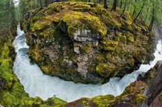 O Rio Upper Rogue, localizado na Floresta Nacional Rio Rogue-Siskiyou possui 64,8 quilômetros protegidos desde 1988. Crédito imagens: National Geographic
