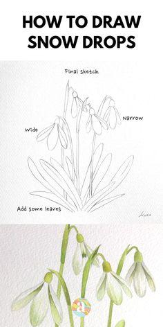 Flower Art Drawing, Flower Drawing Tutorials, Flower Sketches, Floral Drawing, Flower Drawing Tutorial Step By Step, How To Draw Flowers Step By Step, Flower Sketch Pencil, Realistic Flower Drawing, Beautiful Flower Drawings