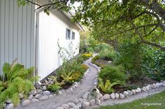 A garden path on the side yard