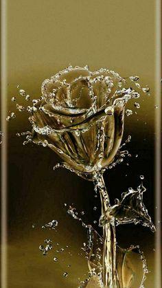 hacks, 5 x 10 backdrops, ketterling aberdeen, fujifilm instant photography … in 2020 Flower Phone Wallpaper, Butterfly Wallpaper, Cellphone Wallpaper, Colorful Wallpaper, Flower Wallpaper, Screen Wallpaper, Wallpaper Quotes, Beautiful Rose Flowers, Beautiful Flowers Wallpapers
