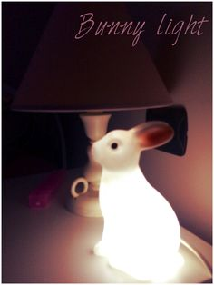 #bunny #night #light