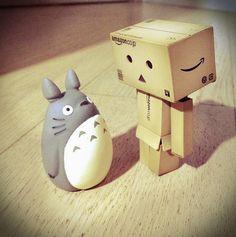 Totoro meets Danbo