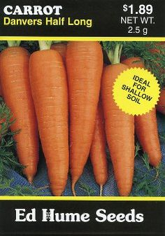 CARROT Danvers Half-long        Popular variety for shallow soils. Ideal vegetable for eating fresh or cooked. Nice to use in salads, soups, stews or as a garnish. Ideal variety for over-wintering. 75 days till maturity.