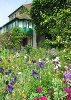 (This is how I remember) Monet's Garden at Giverny