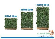 Hecke am laufenden Meter® / Mobilane Fertighecke® Pflanzfertiger Sichtschutz - Heckenelemente - in nur 4 Stunden im Grünen sitzen! Weitere Infos unter www.garten-bronder.de