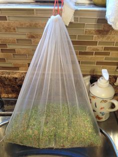 Sprouting organic micro greens with large Hyp-bags. Produce Bags, Sprouts, Organic, Brussels Sprouts