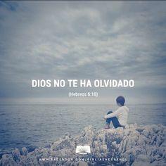 Porque Dios es justo, y no olvidará lo que ustedes han hecho y el amor que le…