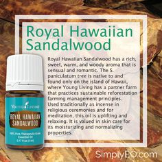 Royal Hawaiian Sandalwood has a rich, sweet, warm, and woody aroma that is sensual and romantic. Essential Oil Starter Kit, Essential Oil Companies, Essential Oils For Colds, Sandalwood Essential Oil, Essential Oils Guide, Essential Oil Diffuser Blends, Essential Oil Uses, Young Living Essential Oils, Esential Oils