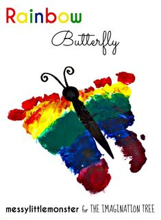 FOOTPRINT RAINBOW BUTTERFLY