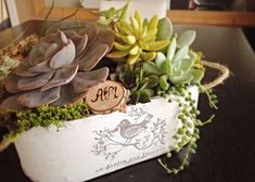 Shabby chic country style white planter, indoor pot, succulent pot, Valentine's gift - All For Garden Succulent Soil, Succulents, White Planters, My Secret Garden, Shabby Chic Homes, Metallic Paint, Country Style, Valentine Gifts, Personalized Gifts