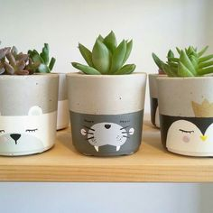 Concrete flower pots Concrete flower pots Is this concrete? Decorative surfaces that inspire! Concrete was reinvented. Thanks to decorative concrete coatings and techniques, a multitude of color patte Painted Plant Pots, Painted Flower Pots, Pots D'argile, Fleurs Diy, Painting Concrete, Concrete Pots, Concrete Crafts, Succulent Pots, Succulents