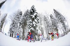 Athletes compete in the Women's Team Sprint Classic Final (c) Getty Images Cross Country Skiing, Athletes, Olympics, Classic, Outdoor, Image, Derby, Outdoors, Classical Music