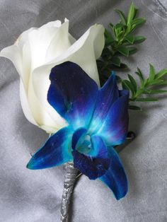 Blue Orchid and White Rose Boutonniere