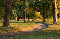 Esterhazy's Park by Najitsabes #ErnstStrasser #Kroatien #Croatia