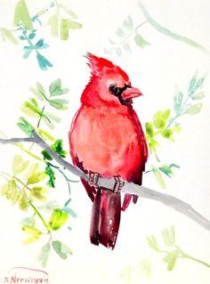 Cardinal bird original watercolor painting 12 X 9 by ORIGINALONLY, $24.00