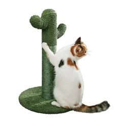 PetnPurr Cat Scratching Post with Teaser Ball: The Cactus Cat Scratcher Your Cat Always Wanted *** Be sure to check out this awesome product. (This is an affiliate link) Cat Lover Gifts, Cat Gifts, Sisal, Modern Cat Toys, Cactus Cat, Cat Scratching Post, Kitten Love, Cat Scratcher, Animal Design