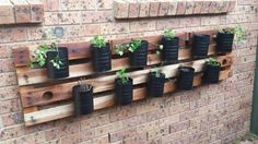 Herb garden made from pallet and reclaimed formula tin cans.