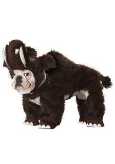 Woolly Mammoth Pet Costume  http://www.planetgoldilocks.com/  10%off