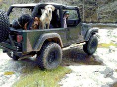 Great Jeep dog shot! #dog #car #jeep #ride #muddy