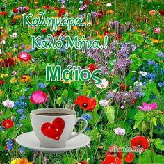 Flowers, Plants, Top, Baddies, Plant, Royal Icing Flowers, Flower, Florals, Crop Shirt