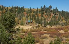 HOPE VALLEY HOMESTEAD - Farms & Ranches For Sale in Kirkwood, CA