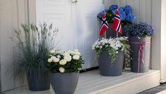 Ladder Decor, Christmas Wreaths, Planter Pots, Tips, Home Decor, Holiday Decorations, Holidays, Backyard Patio, Decoration Home