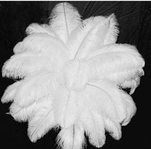 bon plume d'autruche 20 pcs 20 à 22 pouces 50 à 55 cm, le mariage blanc table décorée plumes d'autruche(China (Mainland))