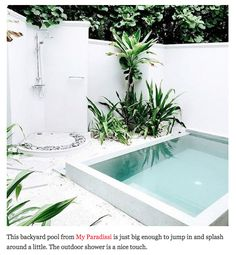 Tiny pool and outdoor shower - future back yard?