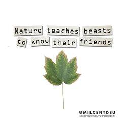 William Shakespeare #frases #palabras #leermcx