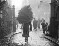 A soldier carrying a christmas tree. (Photo by Topical Press Agency/Getty Images). December 1915.