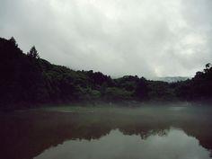 광릉숲 2013.7.13