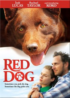 RIP Koko. The character who played Red Dog has passed away. He was battling congestive heart disease.