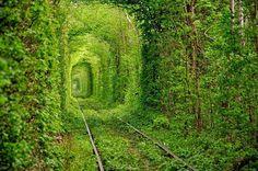 """Mais um túnel lindo está localizado em Kleven na Ucrânia e o lugar ganhou o nome de """"The Tunnel of love"""""""