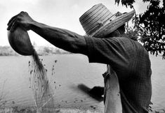 'A campesino peasant winnows wheat by hand with a fan and a coconut shell - Nicaragua' by Larry Towell, 1984