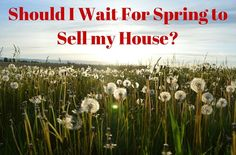 Should you Wait for Spring to Sell Your House? http://www.raleighrealtyhomes.com/blog/sell-your-home-in-the-spring.html