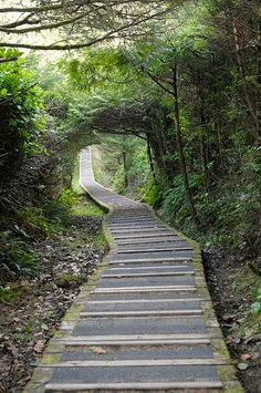Hiking the Rainforest Trail in Tofino, Vancouver Island, British Columbia...