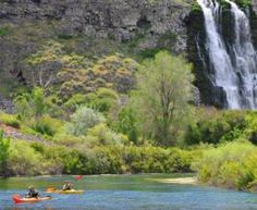 Thousand Springs State Park has several units to explore: Malad Gorge, Kelton Trail, Earl M. Hardy Box Canyon Springs Nature Preserve, Billingsley Creek, Ritter Island, Crystal Springsand Niagara Springs. These incredible scenic areas are all within a short driving distance of each other.