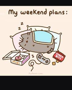 Weekendowe plany Pusheena
