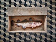 CHERRYSTONE-Photographie-culinaire_cabillaud.jpg (900×681)