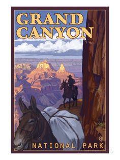Grand Canyon National Park, Arizona, Mule Train Scene Prints at AllPosters.com