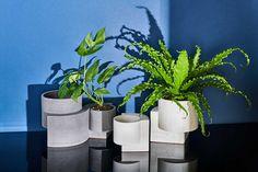 Tortuga-Living-Platform-Vessel-Planters-1 - Design Milk Indoor Outdoor, Indoor Plants, Outdoor Gardens, Terrazzo, Bauhaus Architecture, Journal Du Design, Milk Shop, 2020 Design, Geometric Shapes