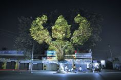 Cambodian Spirits Projected on Trees Awaken the Night - My Modern Metropolis