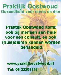 Pvda Hoorn stelt schriftelijke vragen over beïndiging vertegewoordiging Oud-Hoorn in commissie monumenten en welstand | Hoorn Actueel
