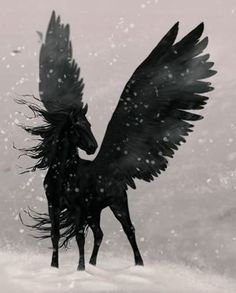 (From Percy Jackson:) Source by Dark Pegasus–Blackjack? (From Percy Jackson:) Source by Fantasy World, Fantasy Art, Percy Jackson Personajes, Arte Equina, Percy Jackson Characters, Winged Horse, Mythological Creatures, Heroes Of Olympus, Magical Creatures