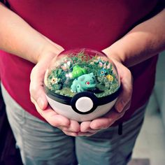 People are selling Pokeball terrariums and they're straight up adorable Pokemon terrarium Pokemon Room, 3d Pokemon, Pokemon Craft, Pokemon Party, Pokemon Gifts, Pokemon Decor, Deco Disney, Pokemon Terrarium, Nerd Crafts